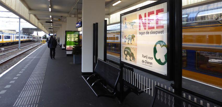 Afbeelding van campagneposters voor de gemeenteraadsverkiezingen in Leiden en het Wiv-referendum